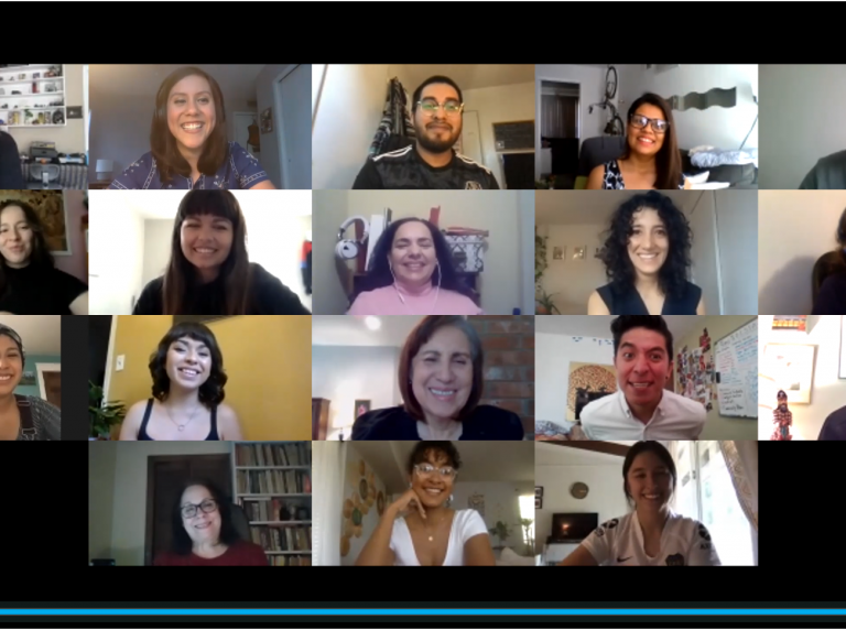 2020 ALI Fellows Graduation Ceremony Video Call